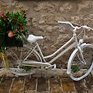 The White Bicycle by Rae Tucker