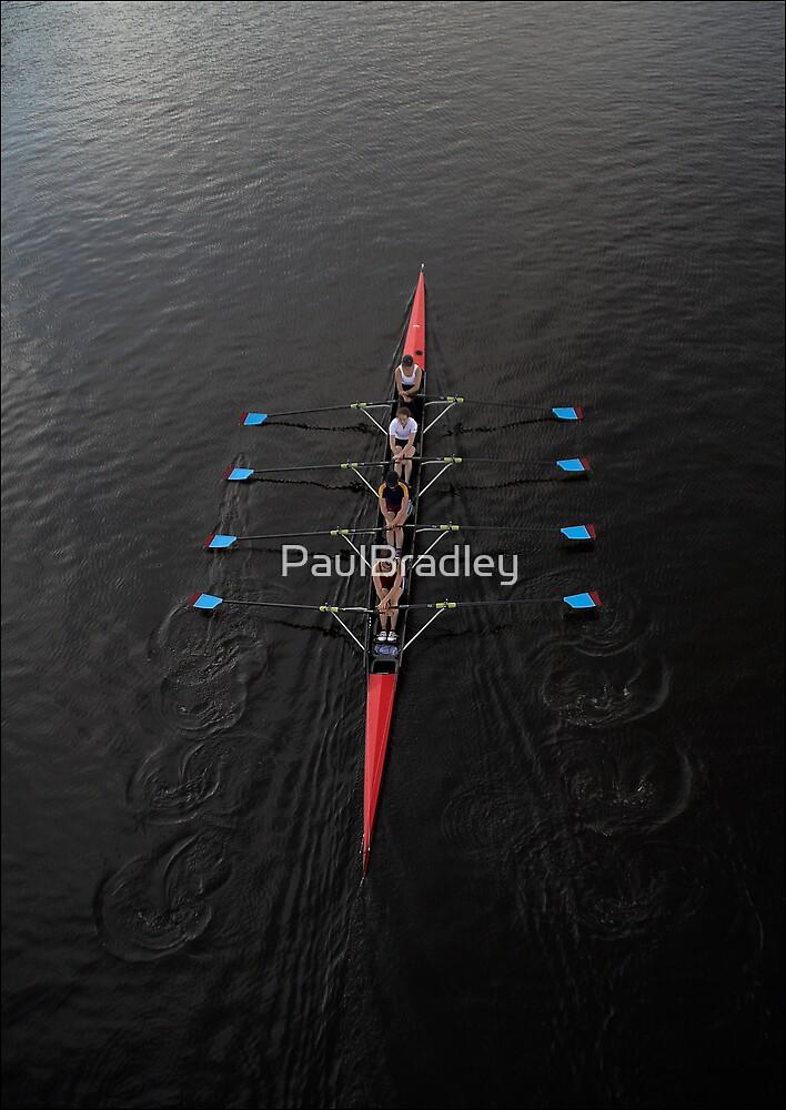 Quads by PaulBradley