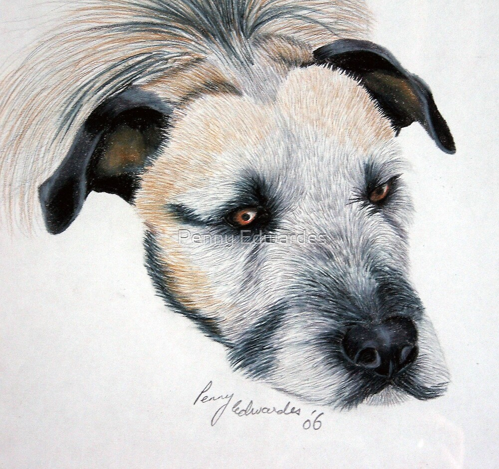 My wolfhound Brutal by Penny Edwardes