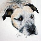My wolfhound Brutal by Penny Edwardes