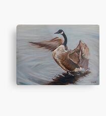 Goose On the pond Metal Print