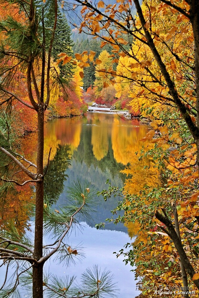 Fall Reflections by Rhonda R Clements