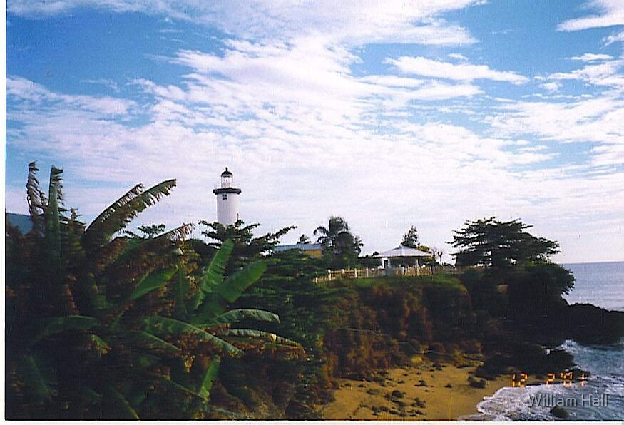 Rincon Puerto Rico Lighthouse by William Hall