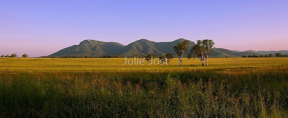 Mt Walsh NP Qld by Julie Just