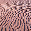 Ripple in the sand by helmutk