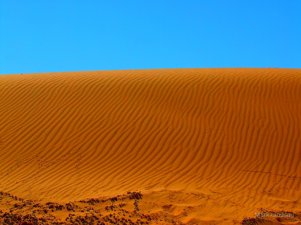 Patterns in the sand by Mark Lindsay