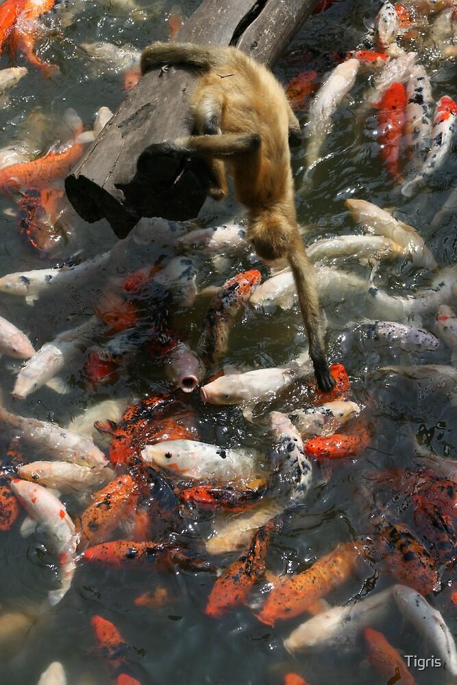 fishin' hole by Tigris