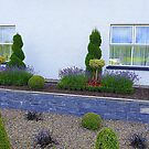 Topiary And Lavender by Fara