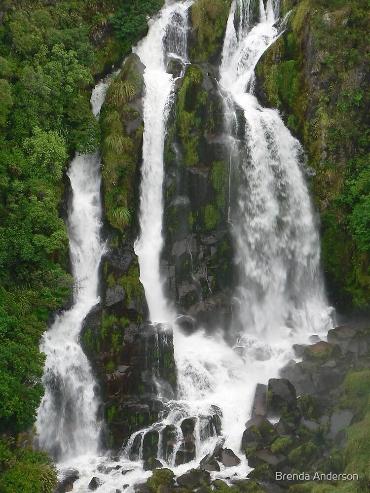 Waipunga Falls by Brenda Anderson