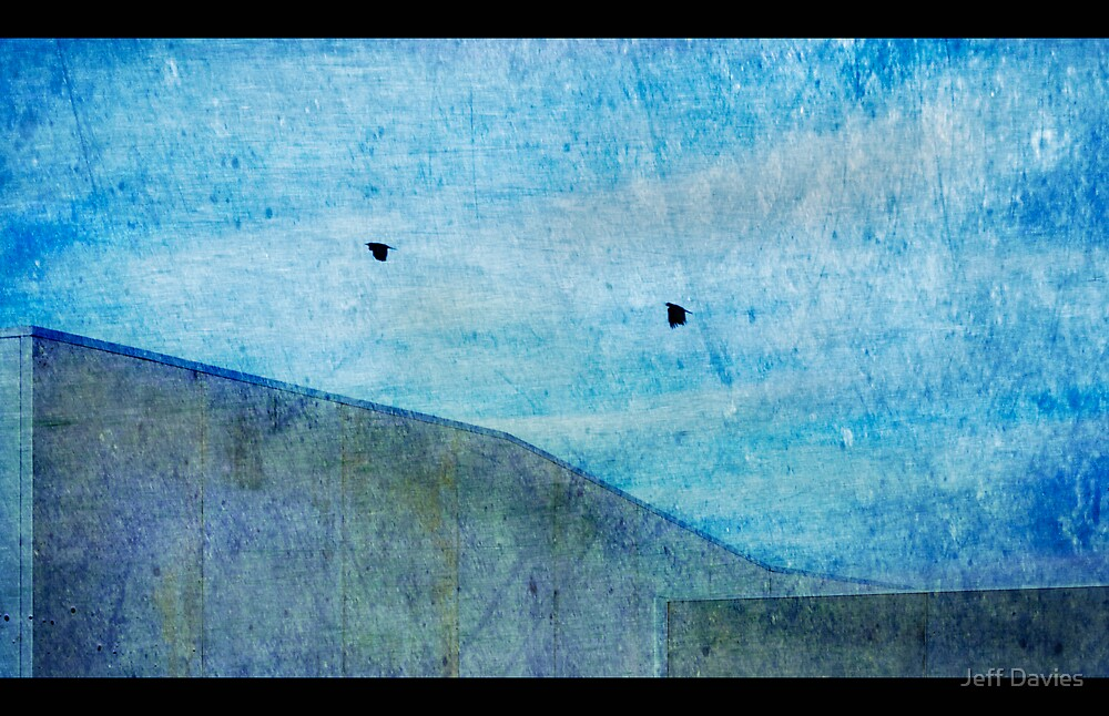 Two crows by Jeff Davies