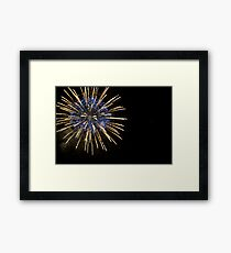 Baby, You're A Firework Framed Print