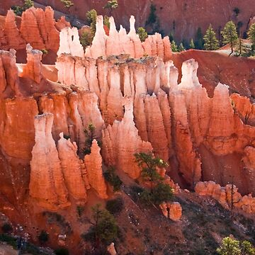 Morning in Bryce Canyon by valentina9