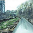 Tracks by Robert Lake