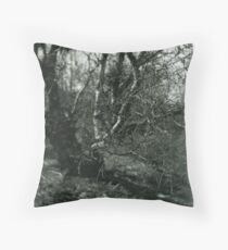Strength in Depth Throw Pillow
