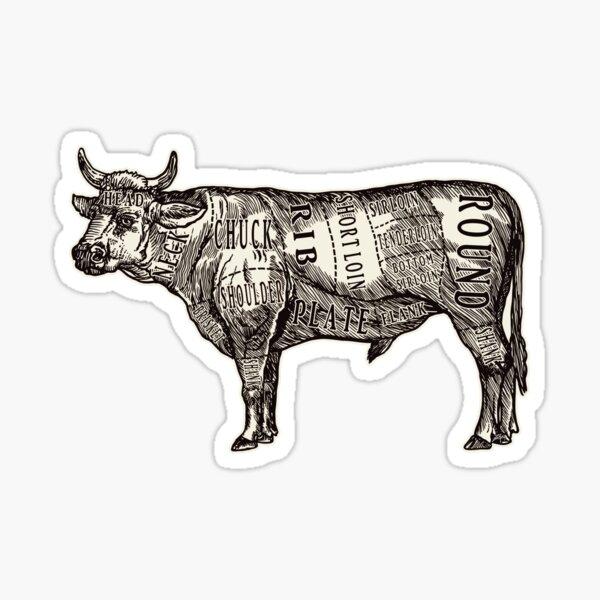 Butcher Chart: Cow Edition Sticker