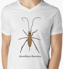 NZ native animals - weta  T-Shirt