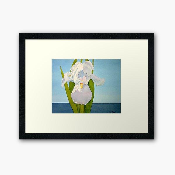 White Iris Framed Art Print