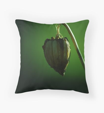 suspended heart Throw Pillow