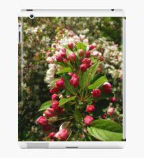 Fer Blooming sake iPad Case/Skin