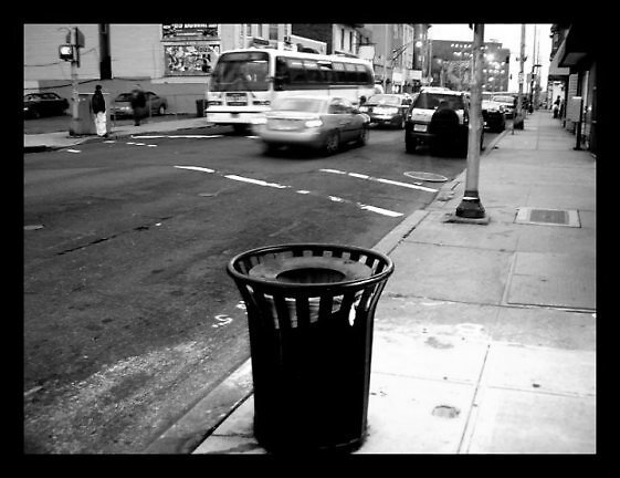 My Trashcan by Nyesha Barrett