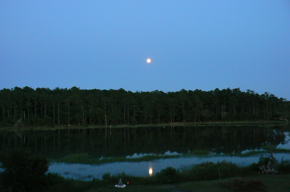 Full moon rising by Kayak1