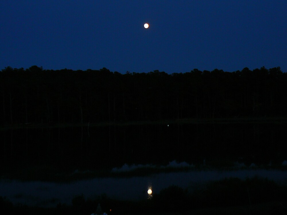 Full moon over the water by Kayak1