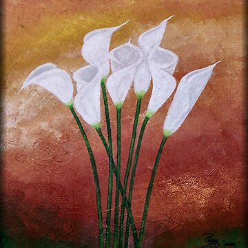 Cala Lily's by peggygarr