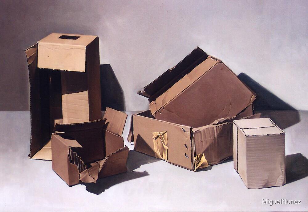 5 BOXES  by MiguelNunez