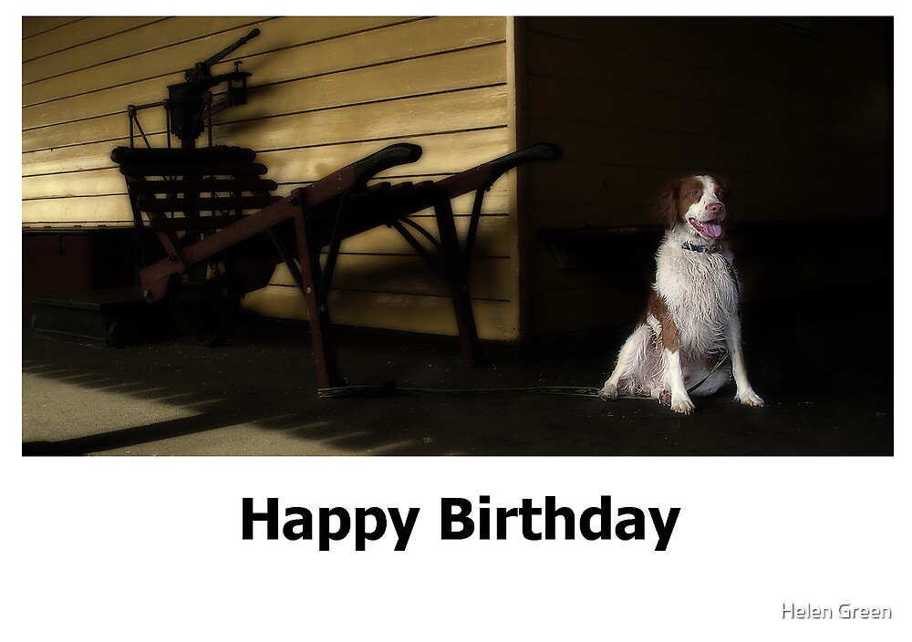 Birthday Card No 4 by Helen Green