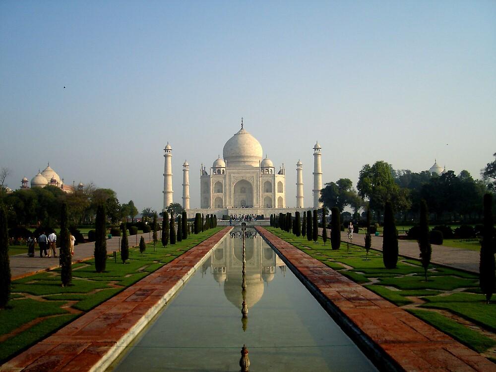 Taj by lotusboat