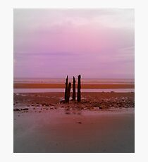Focal Point Photographic Print