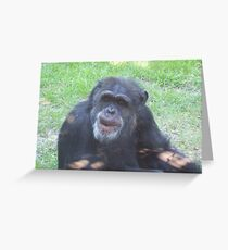 You were talking to me? Greeting Card