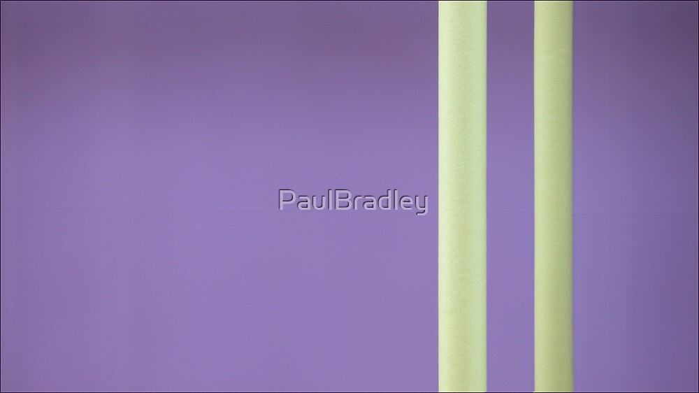 Yellow on Purple by PaulBradley
