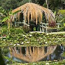 Shelter at Lotus Garden by Judi Corrigan