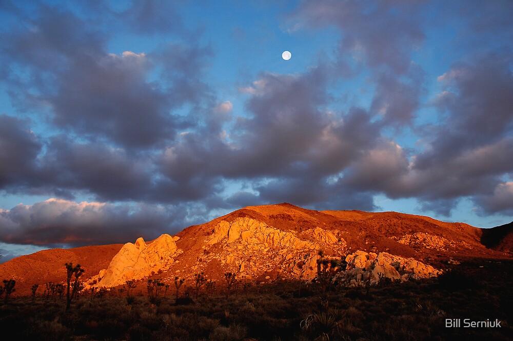 Ryan Mountain by Bill Serniuk