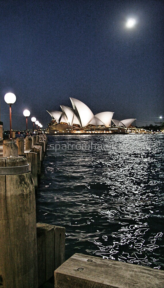 Sydney Series - Opera House by sparrowhawk