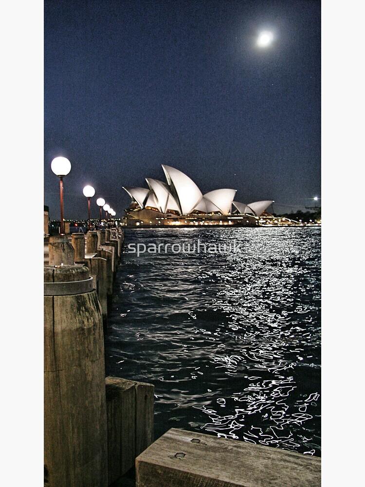 Sydney Series - Opera House by sparrowhawk