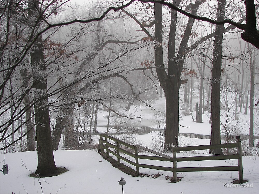 Winter's Color in Black and White... by Karen Goad