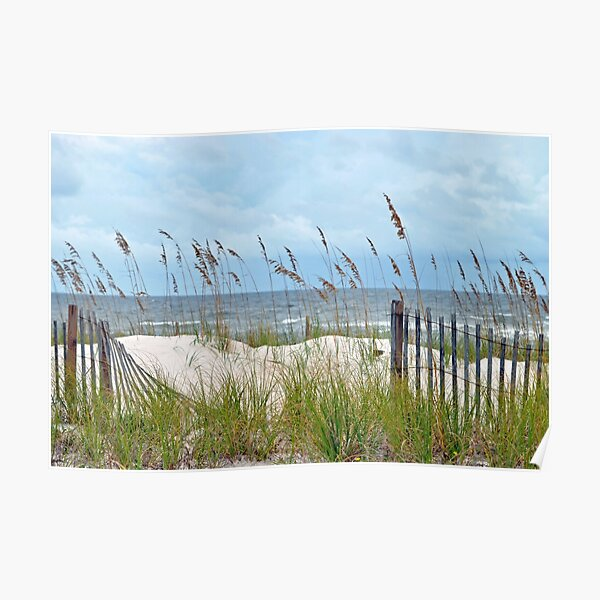 Storm Fence Poster