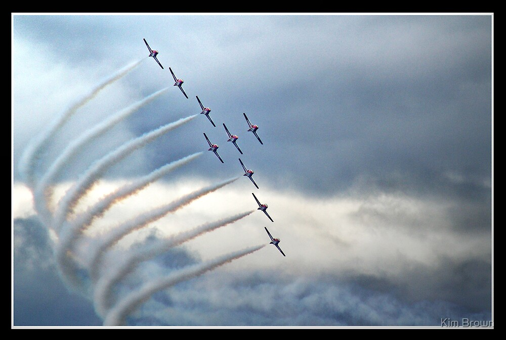 Snowbirds2 by Kim Brown