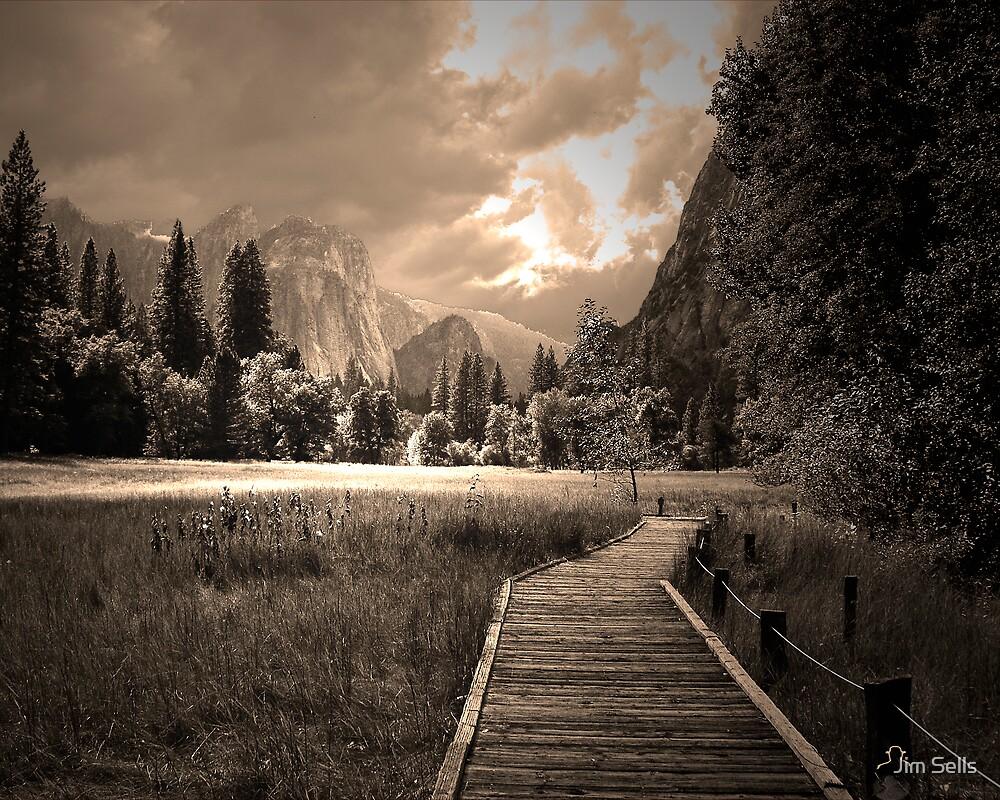 Yosemite Boardwalk by Jim Sells