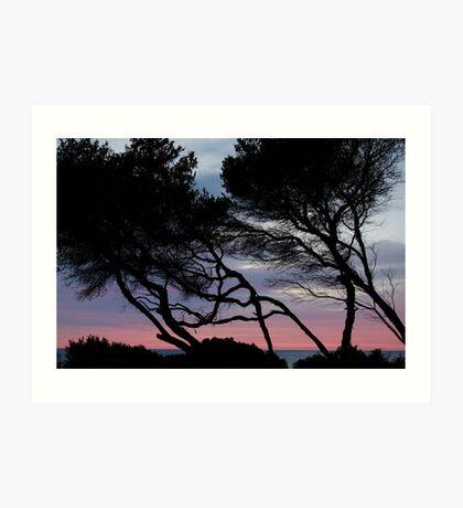 Point Grey, Lorne Art Print