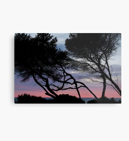 Point Grey, Lorne Metal Print