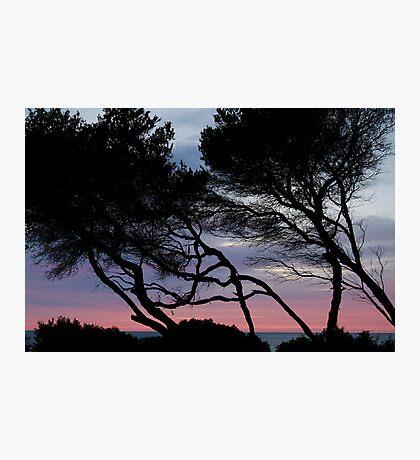 Point Grey, Lorne Photographic Print