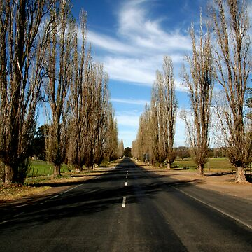 Country Road by benherman