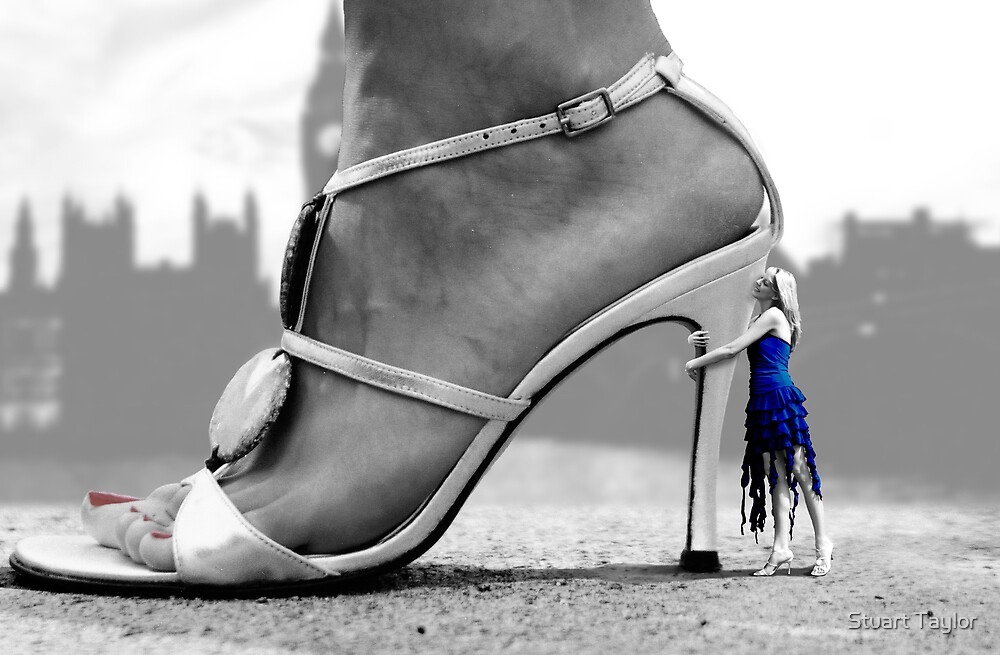The Lady and the Shoe by Stuart Taylor