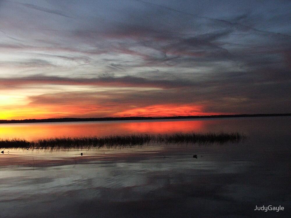 Lake Lochloosa Sunset by Judy Gayle Waller