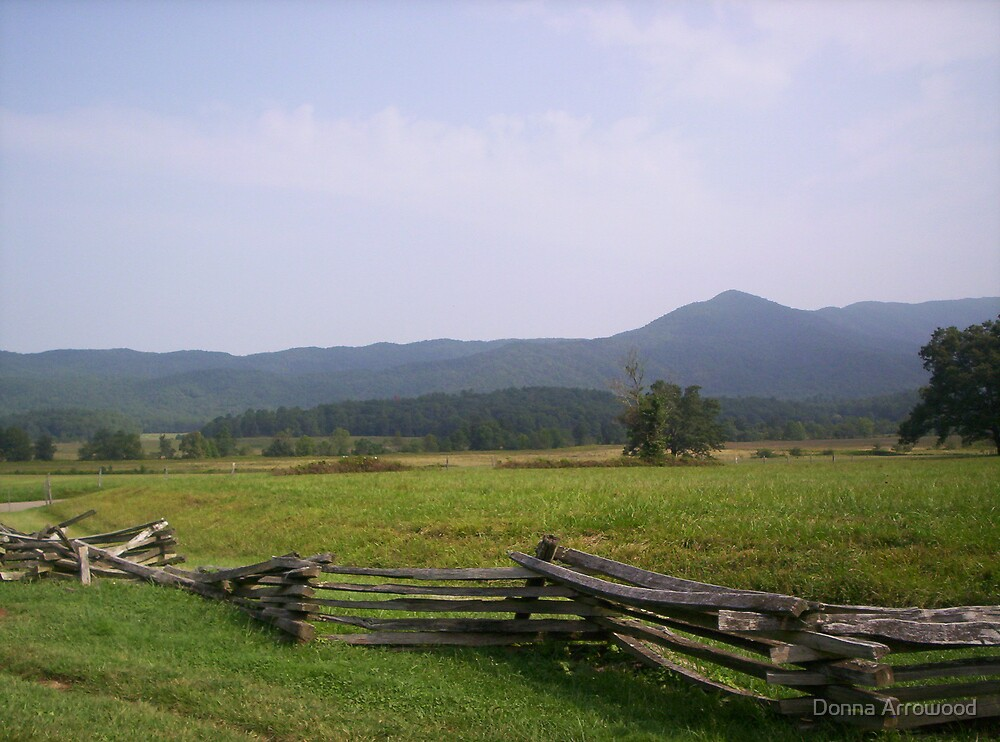 Cades Cove 2 by Donna Arrowood