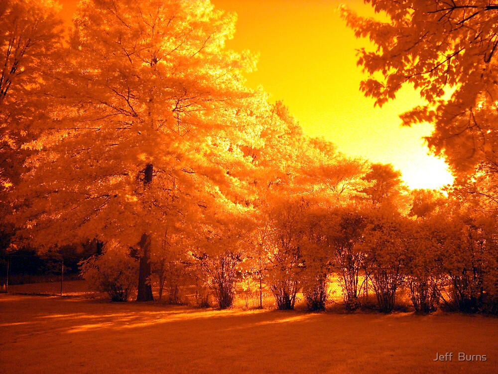 Setting Sun by Jeff  Burns