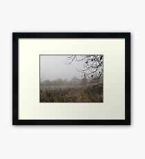 Image one hundred and seven Framed Print